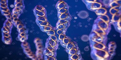 Что такое ген? Как влияет наше питание на наше самочувствие ?