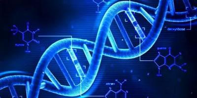 Защита генома. Способы противостояния чужеродному вторжению